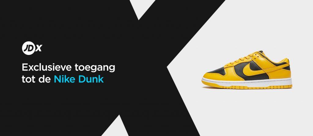 Nike Dunk banner